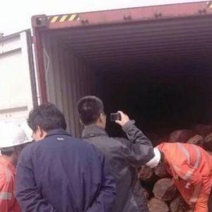 非洲硬木进口海运,国内港口清关,送货一站式物流