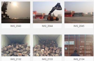 赞比亚木材进口上海清关送货,付汇服务