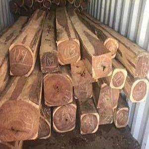 非洲木材进口中山手续流程汇总,审价有方